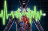 Coração de Ciclista